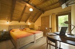 HAb 31-Irati - Hoteles Selva de Irati - Hotel Rural Besaro - Ochagavia - Navarra.